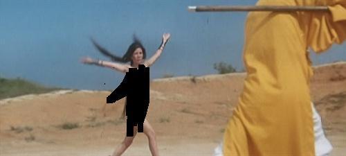 日本忍者题材的电影,里面有女忍者,还有个老和尚,不知道是电影还是