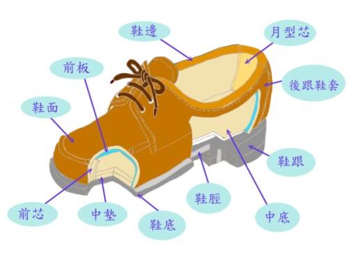 哪里能够找到鞋子结构说明图