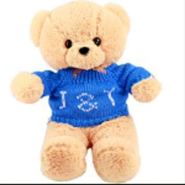 送女孩10岁的生日礼物 可爱图片毛绒玩具