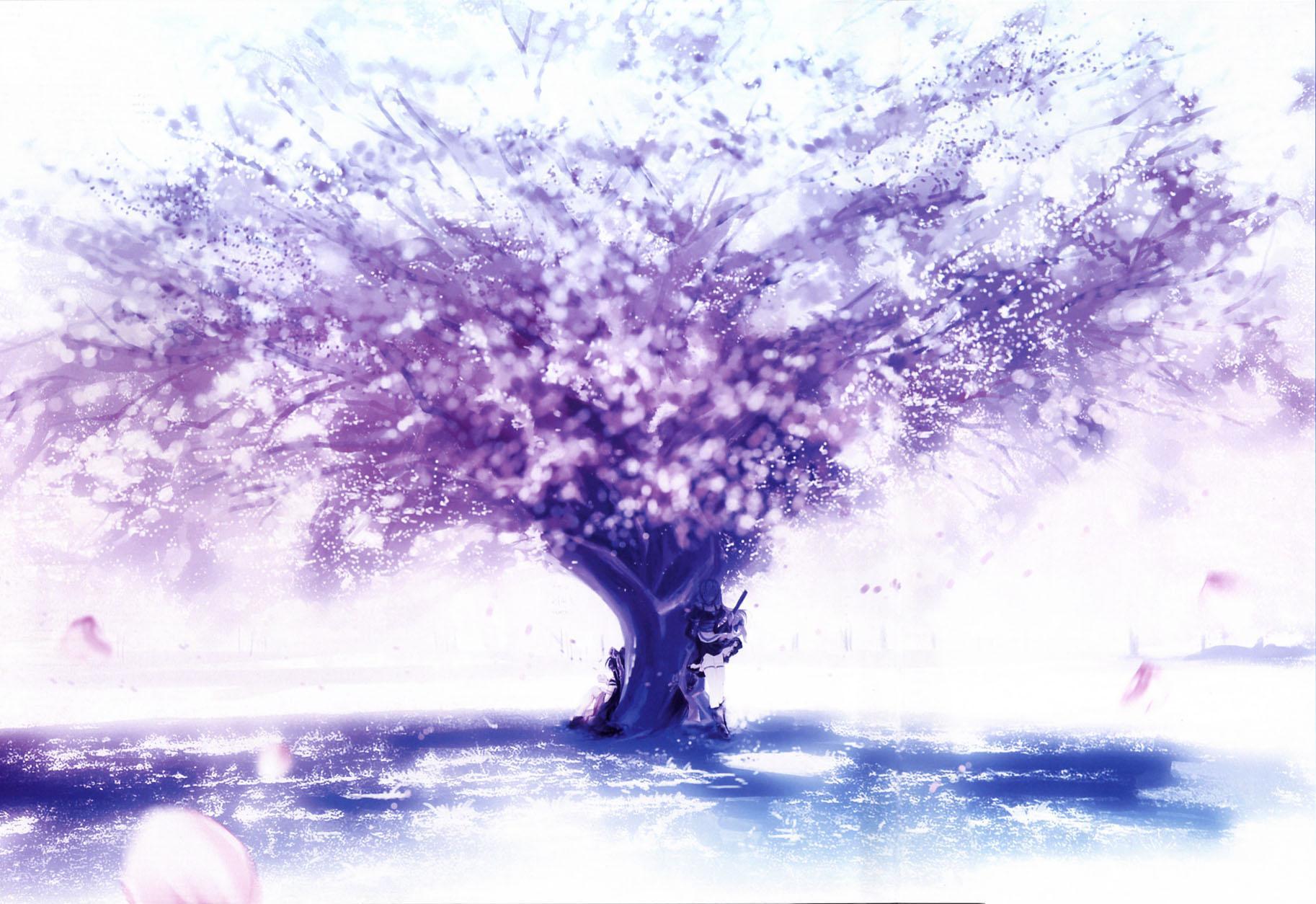 紫色樱花钢琴图片