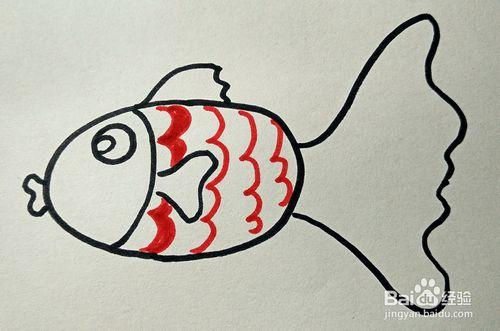 金鱼的画法