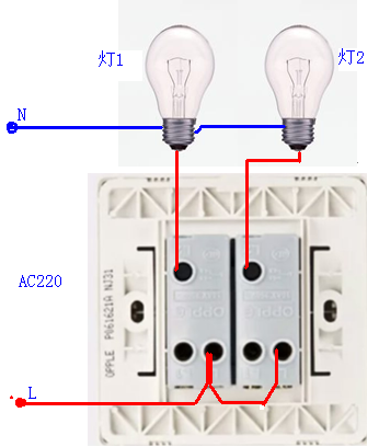 一个火线进线,分别接两个灯,用一个双联单控开关如何接线?如图!图片