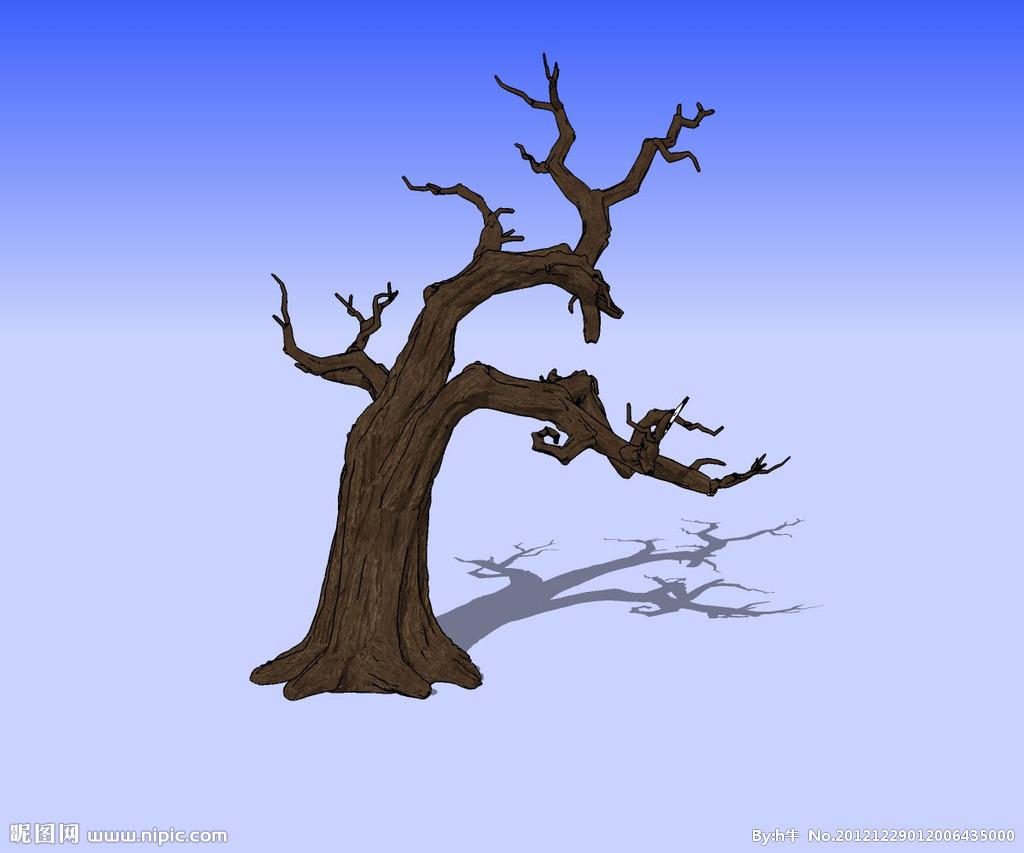 枯萎的树怎么画
