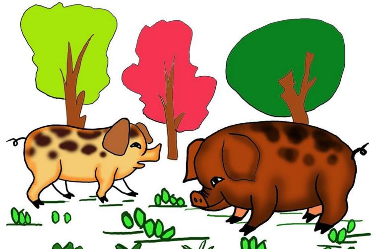 猪新年儿童创意画教案