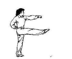 右脚落地,向左转体90°,下蹲成马步,同时左拳变掌,屈臂上架,冲右拳;目图片