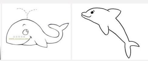 海底动物的简笔画图片