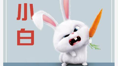 壁纸 动物 兔子 480_270