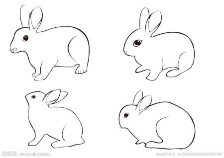 小白兔怎么画
