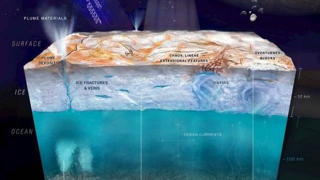 遗失在太空中的尸体会成为其他星球生命的起源吗?的头图