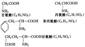 (2)该多肽进行水解时,需_______个水分子,得到_______个谷氨酸分子图片