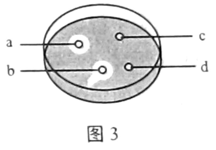 生物 微生物的分离和培养