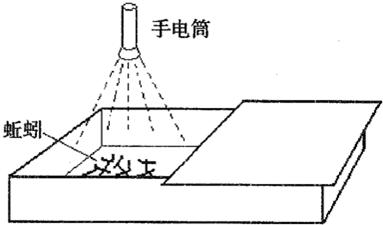 电源网蚯蚓机电路