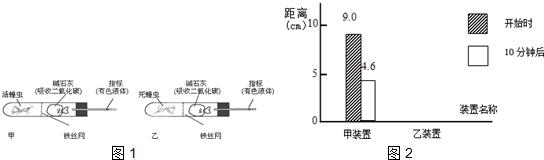 (1)蝗虫身体的结构和功能的基本单位是______.