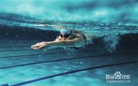 新手怎么学游泳 新手游泳攻略