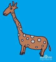 长颈鹿画法教程:画长颈鹿方法、步骤。儿童画