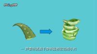 芦荟怎样做面膜