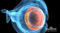 视神经萎缩中医怎么提高视力?