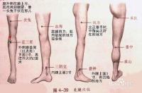 怎么瘦成怎样瘦成筷子腿(图)
