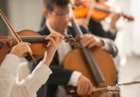 传统音乐中的乐队有哪些种类
