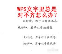 WPS文字里总是对不齐怎么办