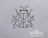 儿童简笔画:七星瓢虫画法,怎么画瓢虫?如何画