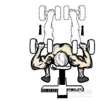 12岁男生怎样锻炼胸肌
