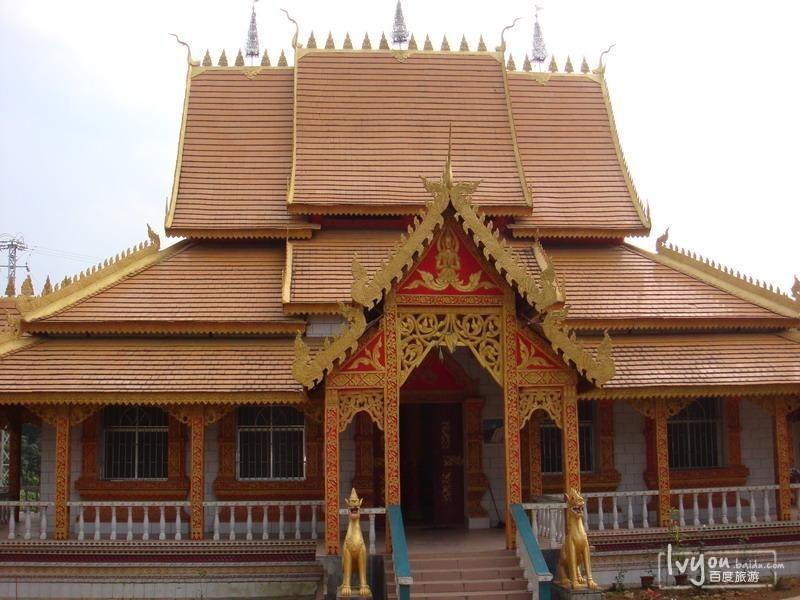 缅甸红木树图片