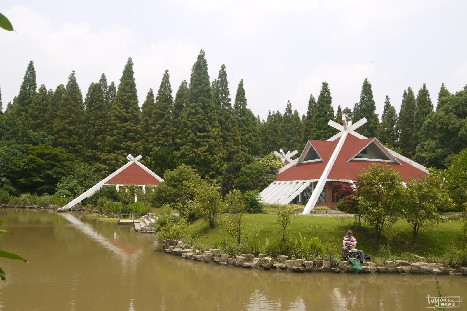 上海崇明岛一日行_崇明岛旅游攻略_百度旅游