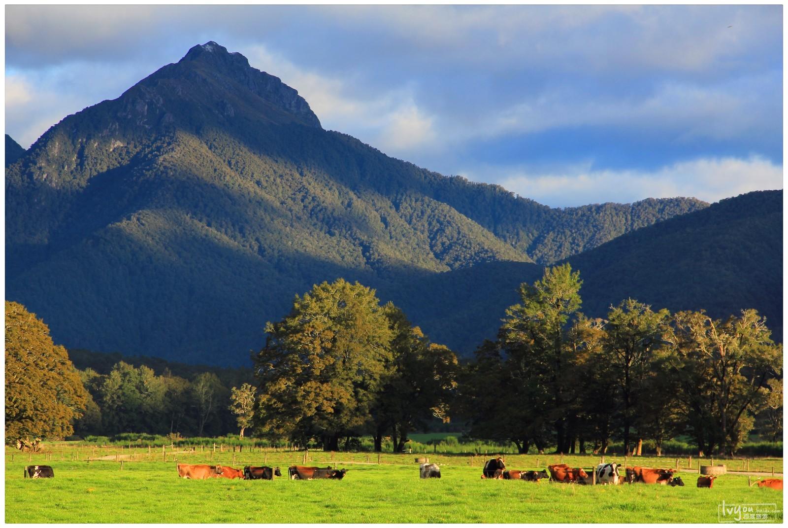 在新西兰,遇见最纯净的世界.