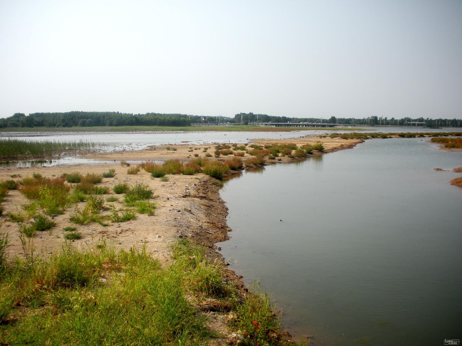 公园是秦皇岛近年来重点打造的海滨湿地保护工程,建有鸟类生态保护
