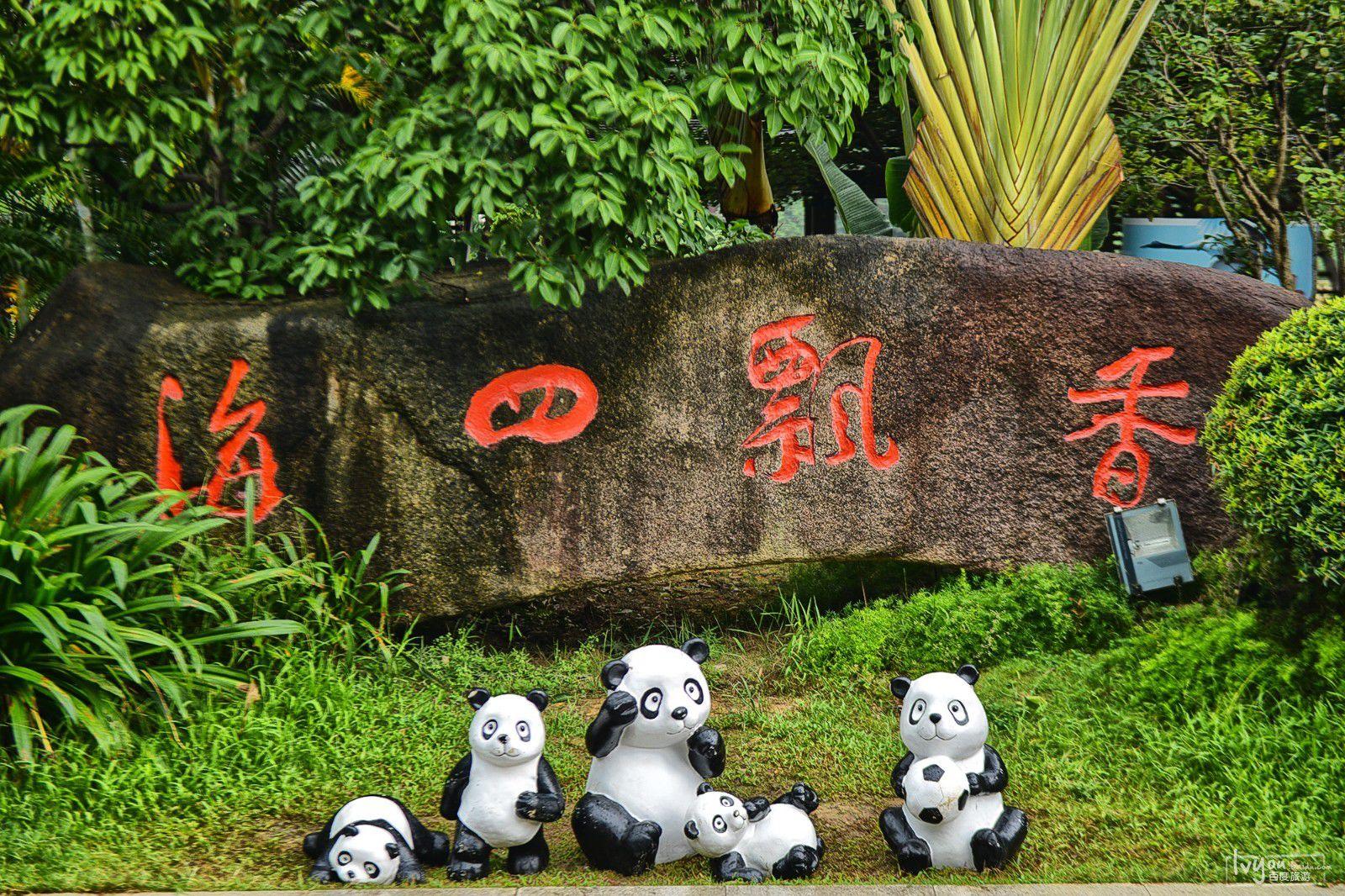 天啦噜,东莞香市动物园有大熊猫啦!