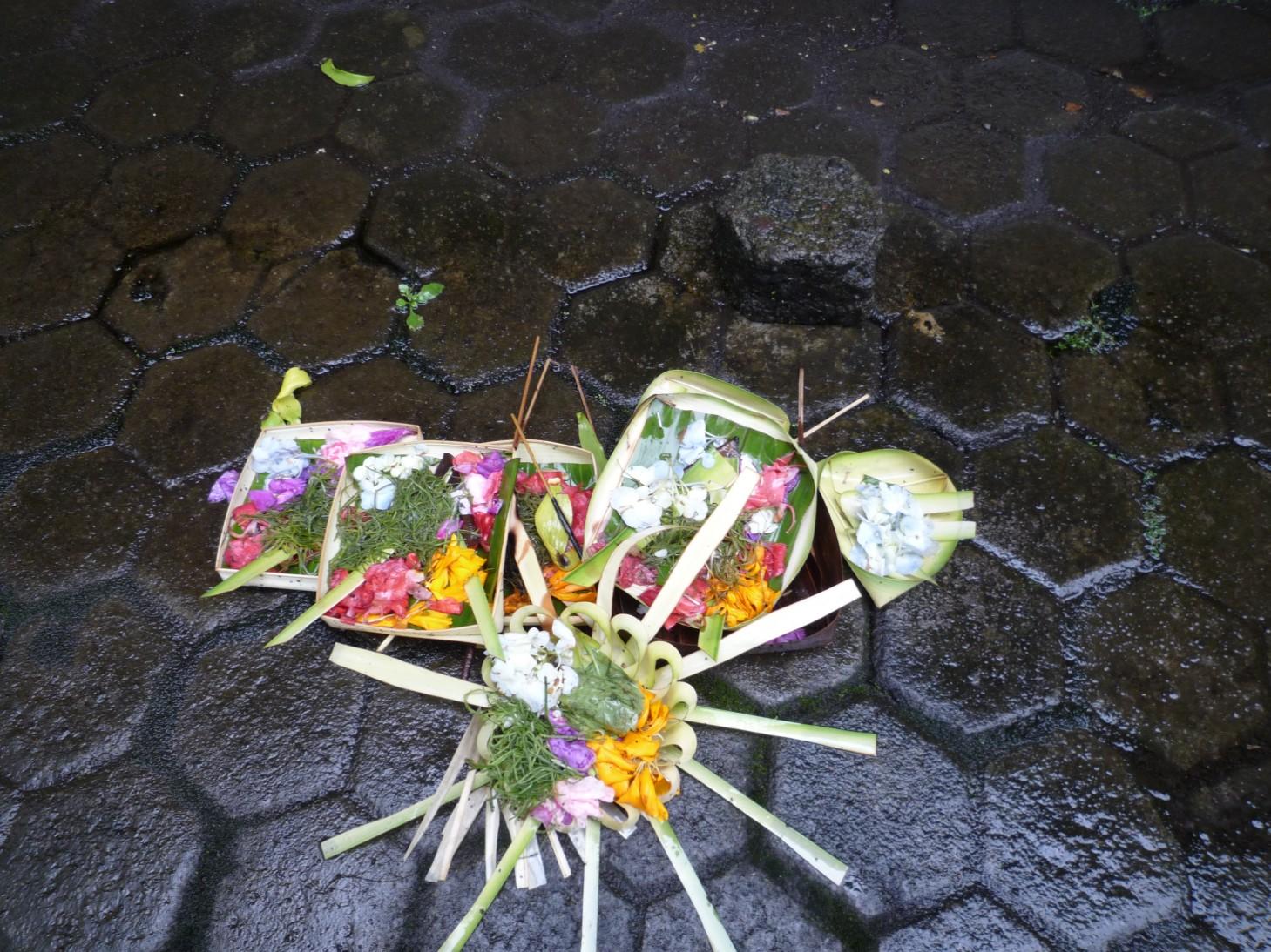 巴厘岛到处都有这种小花篮,似乎是祭祀用的   里面还有紫阳花