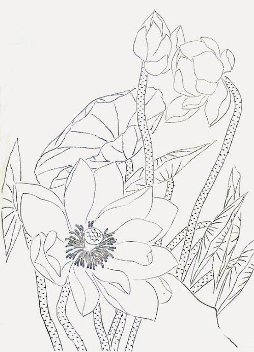 佛教莲花图片手绘