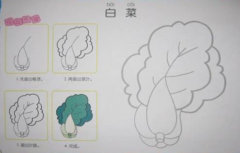有谁知道大白菜的简笔画怎么画的?