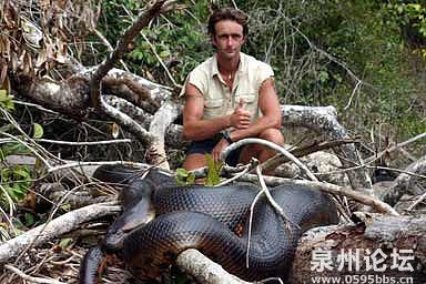 巨蛇的简介