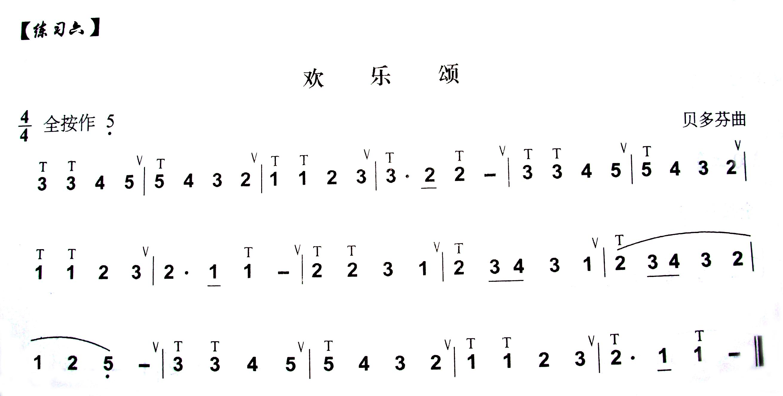 请大家推荐几个简单一点的葫芦丝简谱图片