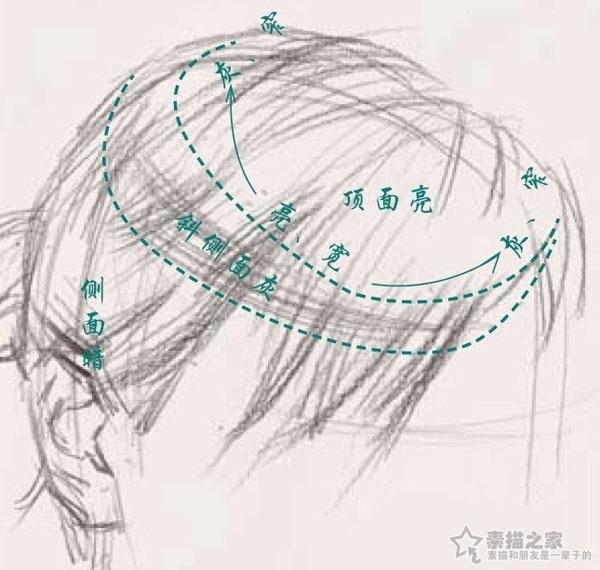 素描头发的步骤