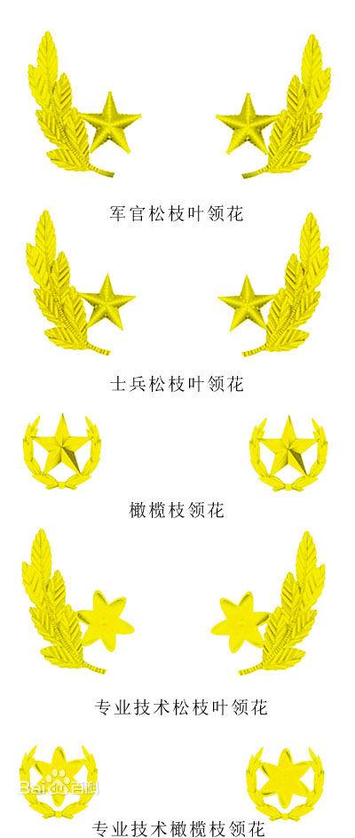 解放军领口是麦穗还是橄榄枝,还有肩章,大檐帽上的都是什么图案,要求