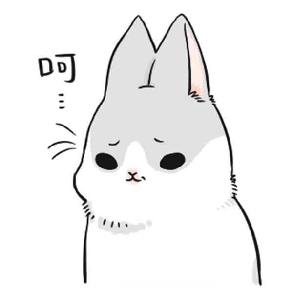 图片中的兔子叫什么,有表情包吗图片