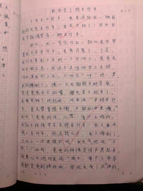 人与动物之间的事,400字日记格式,要自编的