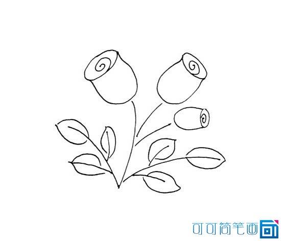 简笔画一朵慢慢凋零的玫瑰花什么颜色的图片