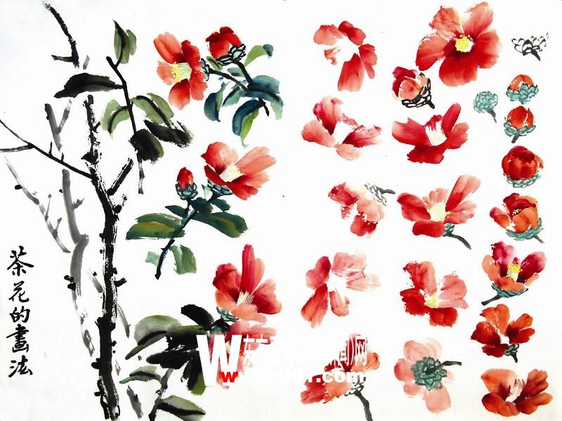 国画的茶花的花朵颜料怎么配图片