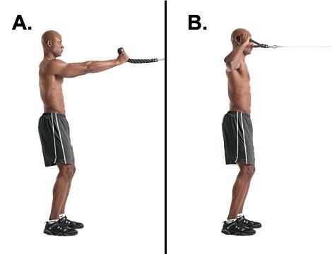 三角肌锻炼_三角肌后束和中束快速锻炼 可以加qq