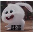 微信表情里面的一个这表情表情叫名字啊吓死你兔子包搞笑图片