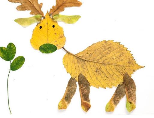 怎么用树叶制作小动物?