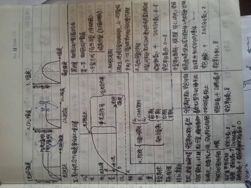 笔记生物版高中v笔记一人教新加坡录取高中的分数线各图片