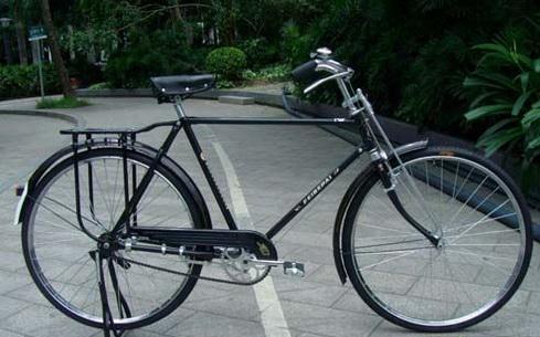 我骑老式凤凰自行车,平路最快速度33-34公里,那么,假如我用专业赛车图片