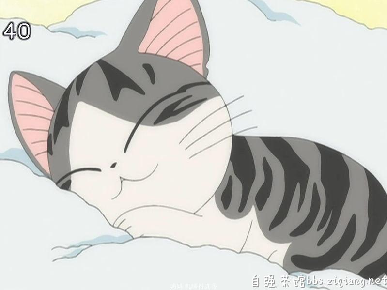 肯德基挂件小奇猫的原形是什么?图片