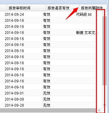 extjs panel 滚动条_extjs panel 边框_extjs panel width