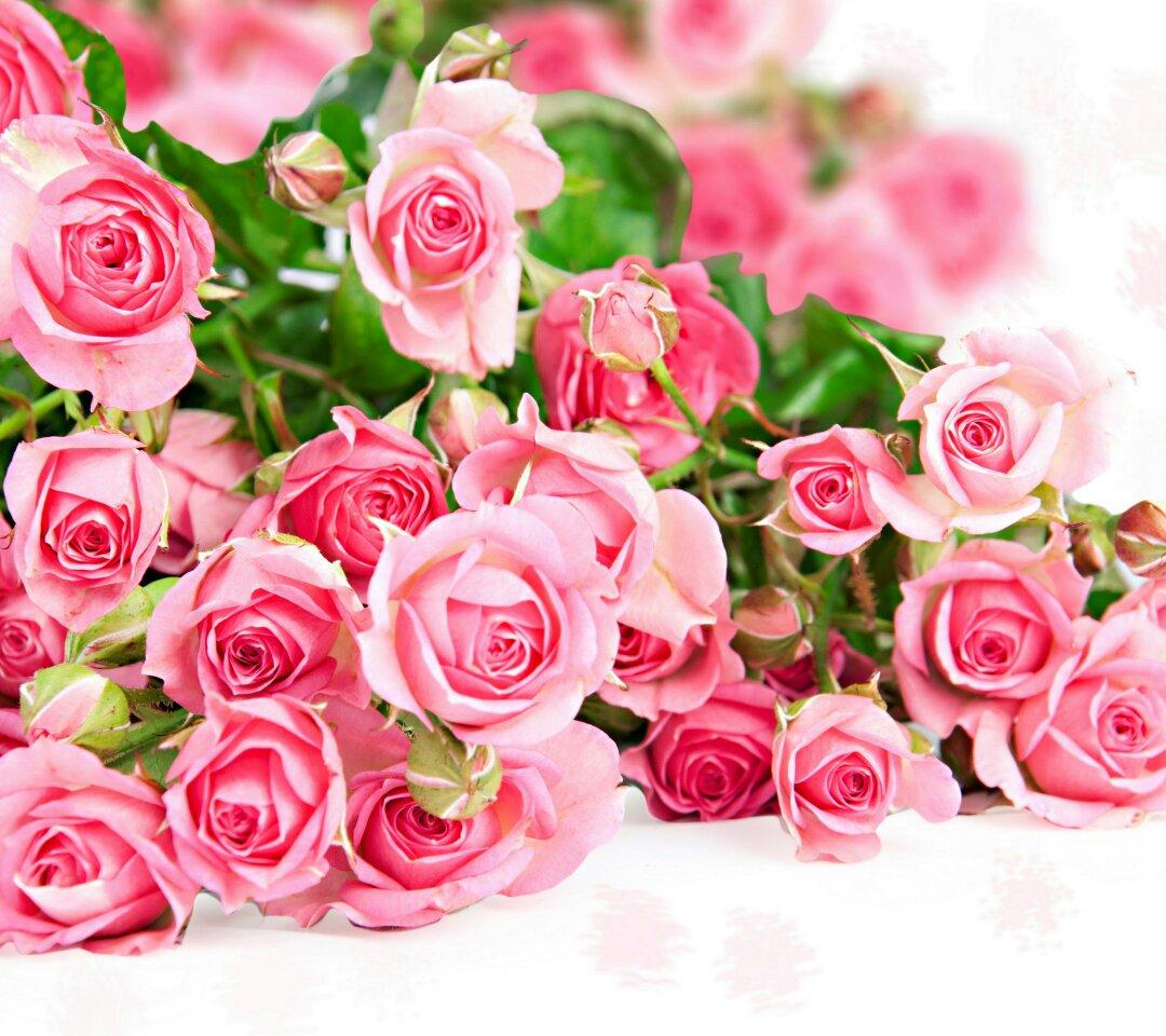 鲜花花束图片大全花样图片